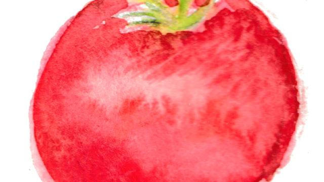 イラストAC登録済トマトの絵無料